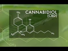 10 Little-Known Uses For CBD - http://greenflowerbotanicals.com/10-little-known-uses-cbd/