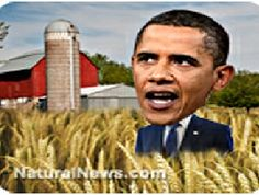 Obama appoints Monsanto shill Tom Vilsack to USDA chief!  Why don't we refresh ourselves for some great articles concerning Monsanto?    Monsanto: 'There is no need for, or value in testing the safety of GM foods in humans'~You're Appointing Who? Please Obama, Say It's Not So! ~Who Owns Obama and FDA... None Other Than Monsanto~Meet Michael R. Taylor, J.D., Deputy Commissioner for Foods~USDA Quietly Approves New GMO Corn, While Touting Safety of Agent Orange Ingredient