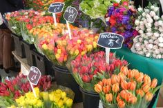 Flowers for sale at the Grenelle Open-Air Food Market in the 15th Arrondisement near the Champ de Mars gardens. #Paris