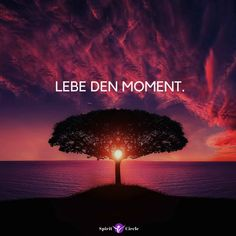 Lebe den Moment - Achtsamkeit Sprüche