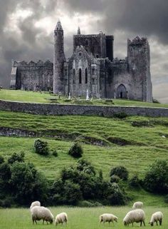 Bucket List: Visit castle in Ireland; The Rock of Cashel, Ireland- BREATHTAKING. Where St.Pat converted the people of Ireland to Catholicism Places Around The World, Oh The Places You'll Go, Places To Travel, Around The Worlds, Chateau Medieval, Medieval Castle, Gothic Castle, Gothic Cathedral, Beautiful Castles