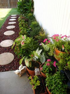House Landscape Pictures garden designers roundtable: designers home landscapes | walkways