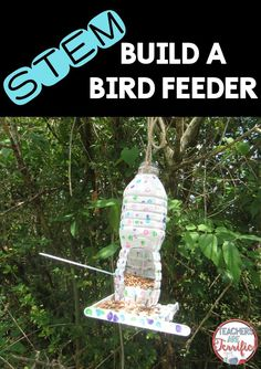 STEM Challenge: Students design a bird feeder with specific constraints and then choose the right materials! This one involves painting, gluing, testing with bird seed, and then hanging the finished masterpiece! Stem Science, Preschool Science, Science Fair, Teaching Science, Mad Science, Earth Day Projects, Stem Projects, School Projects, Steam Activities