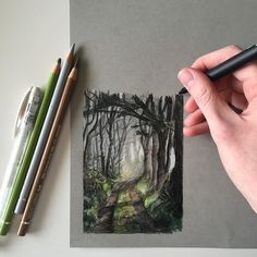 pencil drawings - A little woodland illustration 🌲🌳 art drawing pen sketch illustration woodland forest countryside england nature wildlife fabercastell Woodland Illustration, Illustration Art Drawing, Art Drawings Sketches, Pencil Drawings, Polychromos, Color Pencil Art, Drawing Techniques, Art Sketchbook, Creative Art