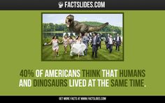 of Americans think that humans and dinosaurs lived at the same time. Random Facts, Fun Facts, Random Stuff, Facts You Didnt Know, Did You Know, Fact Slides, Dinosaurs Live, Fact Of The Day, Wtf Funny