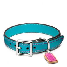 The Legacy Leather Collar from Coach Beatrice would look gorgeous in this collar!