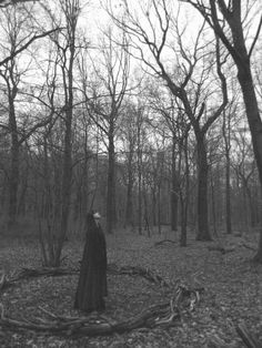 Witches' wood.