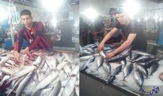 التونسيون يُفضِّلون الأسماك على اللحوم في الأيام الأولى لرمضان: شهدت أسواق بييع السمك في تونس حراكًا كبيرًا منذ بداية شهر رمضان، حيث أقبل…