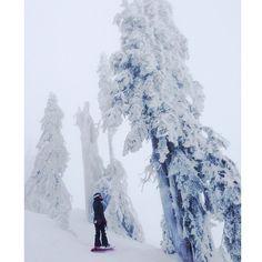 Frosty day today! #snowboarding #cypressmountain #girlswhosnowboard