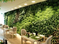 Sala da Arquiteta: Jardins verticais