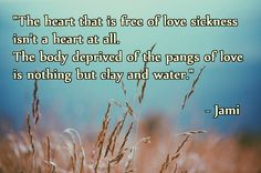 """""""The heart that is free of love sickness isn't a heart at all. The body deprived of the pangs of love is nothing but clay and water."""" – Jami ( inspirational motivational spirituality spiritual sufi sufism wisdom love poetry poem rumi quotes quote )"""