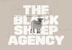 The Black Sheep Agency portfolio photo