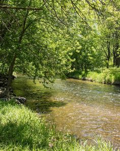 Minnehaha Creek. #minnehahacreek #cityofminneapolis #chooseminnesota #minnesota365 #onlyinmn #captureminnesota #mprphotos #bestofsouthmpls #natureinminneapolis #natureinthecity by ediths.photos