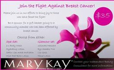 Donate a Mary Kay basket for Making Strides Against Breast Cancer in #Tallahassee.