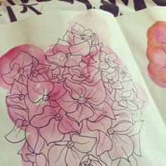 Watercolour and fineliner floral visual studies by Rebecca Dagless