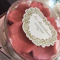 #laduree rose 01