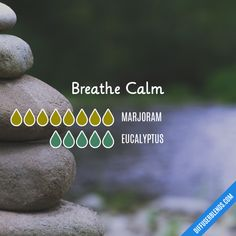 Breathe Calm - Essential Oil Diffuser Blend