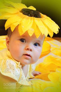 Sun Flower by irosi