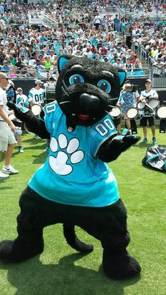 Panthers on from Carolina Panthers  Swafford Our favorite Carolina cat is about to hit the field!from Carolina Panthers  Swafford Our favorite Carolina cat is about to hit the field! Carolina Panthers Football, Football Team, Panther Football, Nc Panthers, Football Things, Football Pitch, Football Season, Fifa, Carolina Pride