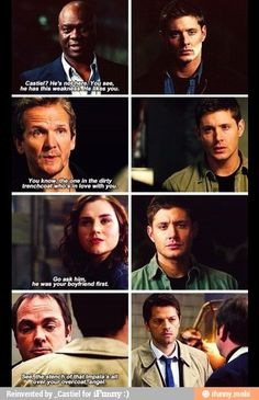 I feel like ever character thats actually in the show ships Destiel