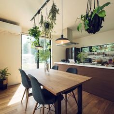 tongariさんの、入居後,キッチン,のお部屋写真