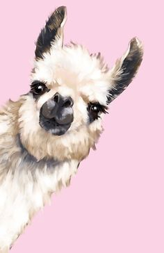 'Sneaky Llama' Poster by bignosework - # Sneaky . - 'Sneaky Llama' Poster by bignosework – # sneaky – - Alpacas, Pink Framed Art, Framed Art Prints, Canvas Prints, Wall Prints, Poster Prints, Lama Animal, Llama Drawing, Llama Arts