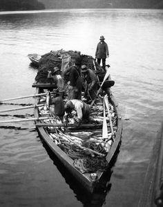Tlingit Indians fishing, Boca de Quadra, Alaska, August 2, 1904. :: American Indians of the Pacific Northwest -- Image Portion