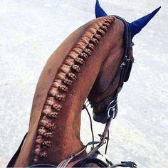 Teen dievča na koni veľký péro