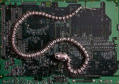 Peter McFarlane Transforms Old Circuit Boards into Gorgeous, Poignant Fossil Art Electronic Gifts For Men, Electronic Art, Electronic Circuit Board, Mixed Media Sculpture, Old Computers, Unusual Art, Canadian Artists, Environmental Art, Art Boards