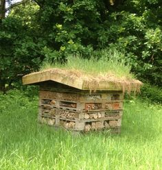 Bug Hotel with grass