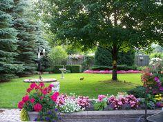 New Backyard Privacy Landscaping Spring 34 Ideas Backyard Trees, Backyard Plan, Small Backyard Gardens, Backyard Retreat, Outdoor Gardens, Backyard Patio, Modern Gardens, Modern Backyard, Privacy Plants