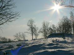 Sunshine-on-snowy-tree-hill