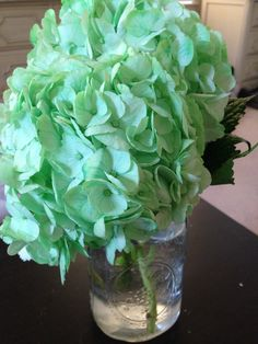 Smell - Keeping the office fresh and smelling beautiful - Mint Green Hydrangeas