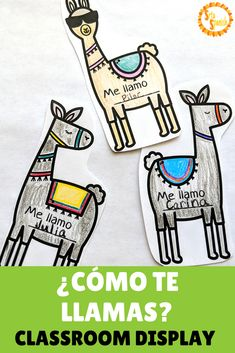 "Are you looking for a fun first day or first week of Spanish class activity? Working on a llama themed classroom? This bulletin board is perfect for novice Spanish students in elementary, middle, or high school! Students color the llamas and decorate it with the phrase, ""Me llamo"", then add it to the ""¿Cómo te llamas?"" display! Click to download and print!"