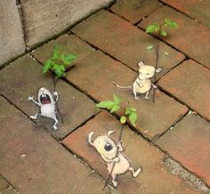 David Zinn on University of Michigan campus, Ann Arbor, 5/16 (LP)