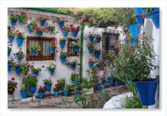A typical patio in Cordoba, Spain. Looking at this really makes me nostalgic.
