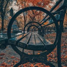 Central Park, NYC 🍁 🍂 🍃 Photography by Creative Photography, Photography Poses, Amazing Photography, Street Photography, Nature Photography, Morning Photography, Central Park New York, Nature Landscape, National Geographic Travel