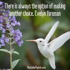 There is always the option of making another choice. @preconplans @CliffRForeman @thecallofspirit pic.twitter.com/DvK5uF7VMA