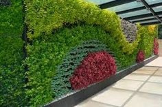 Resultado de imagen para muros verdes