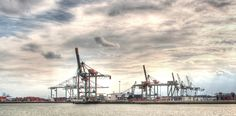 Harbour Cranes - Rotterdam, Zuid Holland