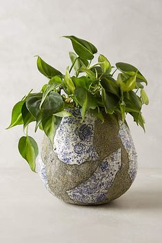 Rustic Prussian Pot - anthropologie.com#anthrofave