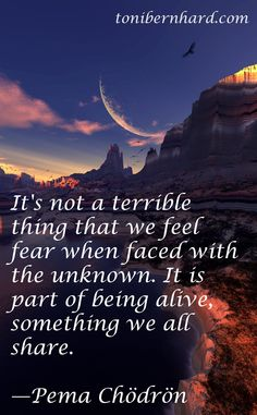 Embrace the unknown Pema Chodron, Spiritual Wisdom, Spiritual Awakening, Spiritual Growth, Mindfulness Meditation, Meditation Quotes, Spiritus, Words Quotes, Quotes Quotes
