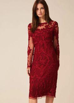 Nikita Tapework Lace Dress - Red - Phase Eight Dresses Occasion Wear, Occasion Dresses, Phase Eight Dresses, Frill Dress, Dress Red, Red Gowns, Dress Shapes, Groom Dress, Stunning Dresses