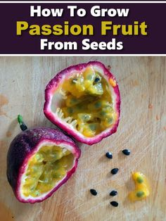 How To Grow Passion Fruit From Seed #gardening #homesteading