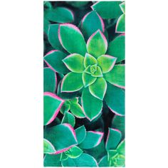 Safdie & Co. Inc. Succulents Beach Towel ($12) ❤ liked on Polyvore featuring home, bed & bath, bath, beach towels and cotton beach towels