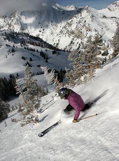 6 Reasons Why You Need to Ski at Alta Ski Area, Utah