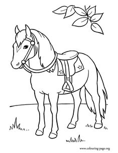 14 best Horse Colouring Pages images on Pinterest | Horse coloring ...