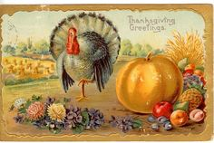 1909 Thanksgiving Greetings Turkey on One Leg Big Pumpkin Corn Shocks Fruit PC