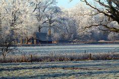 twickel delden winter 2007 foto wieneke van leyen