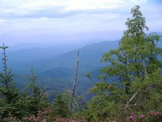For Mt. Le Conte hikers. The ebook More Than 1,001 Hikes to Mt. LeConte and Counting by Ed Wright is available here: http://bit.ly/1wcAlGN. Proceeds benefit Friends of the Smokies.